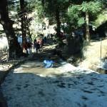 Shimla-pulka