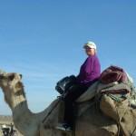 kamel.zarah'